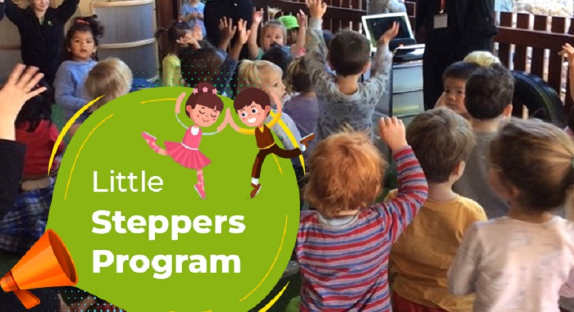 Little Steppers Dance Program